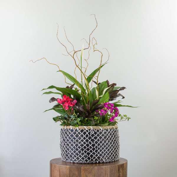 Indoor planter with peace lily, pink, and white flowers, from indoor planter available at Parksville florist Petal and Kettle